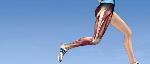 Лікування розтягнення м'язів стегна